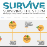 Project logo of SURVIVE - Surviving The Storm: Identifying & Linking Internal Capabilities with Business Continu